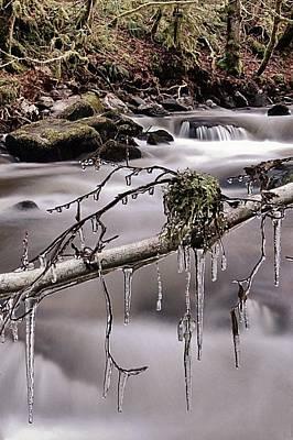 Photograph - Ice by Gavin Macrae