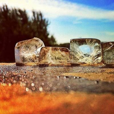 Sunny Photograph - Ice by Samuel Gunnell