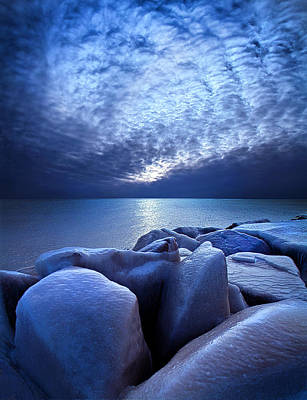 Fall Leaves Photograph - Icebound by Phil Koch