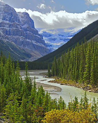 Photograph - Icefields Parkway by Tony Beck