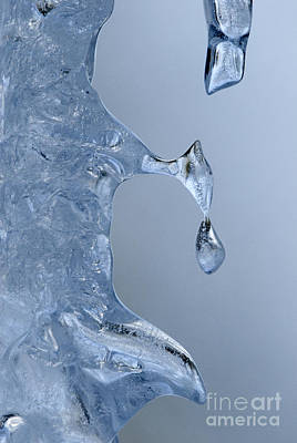 Photograph - Icicle Detail by Sandra Bronstein
