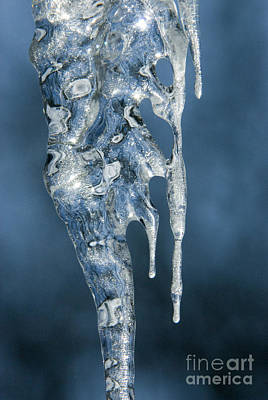 Photograph - Icicle Formation by Sandra Bronstein