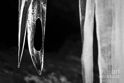 Mellow Yellow - Icicle by Olivier Steiner