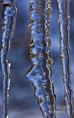 Ice Spikes Photograph - Icicles by Heiko Koehrer-Wagner