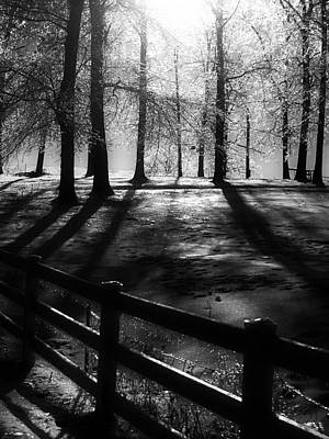 Photograph - Icy Morning by Steven Loyd