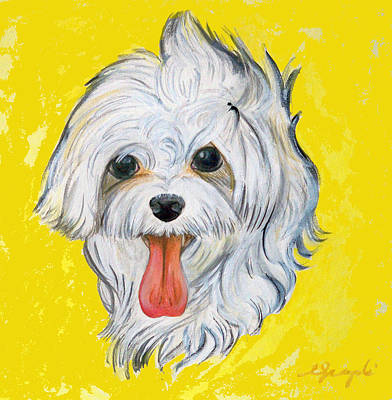 Icy The Maltese Art Print by Ann Marie Napoli