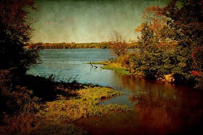 Photograph - Illinois River by Milena Ilieva