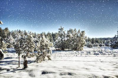Mogollon Rim Photograph - I'm Dreaming Of A White Christmas  by Saija  Lehtonen