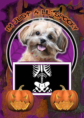Shih-poo Digital Art - I'm Just A Lil' Spooky Shihpoo by Renae Laughner