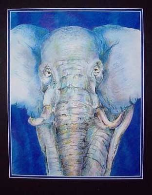 Mixed Media - I'm Not A White Elephant by Karen Camden Welsh