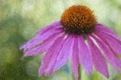 Photograph - Impressionist Coneflower by Heidi Smith