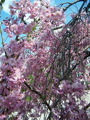 Michael Jackson - In Bloom by Cynthia Amaral