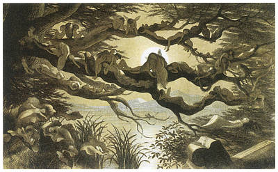 Fantasy Tree Art Painting - In Fairyland Asleep In The Moonlight by Richard Doyle