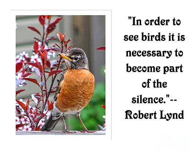 Photograph - In Order To See Birds--r Lynd by Traci Cottingham