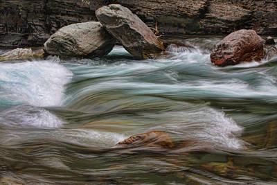 Photograph - In The Creek by Shari Jardina