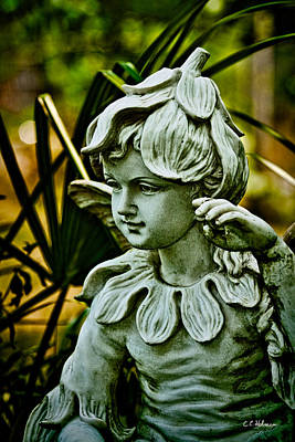 In The Garden Art Print by Christopher Holmes