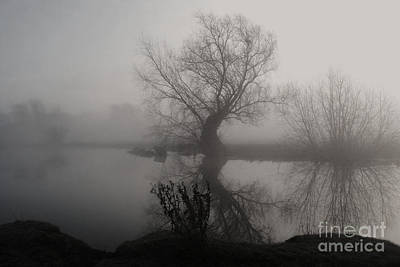 Photograph - In The Mist by Yhun Suarez