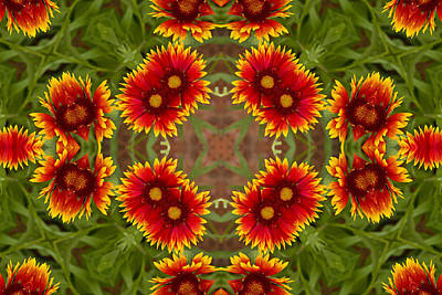 Photograph - Indian Blanket Flower - Kaleidoscope by Bill Barber