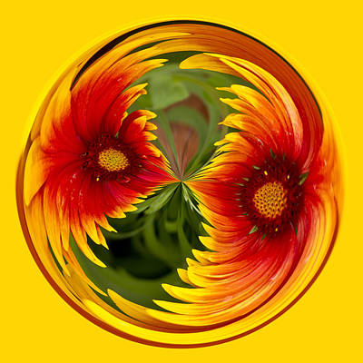 Photograph - Indian Blanket Flower Orb by Bill Barber