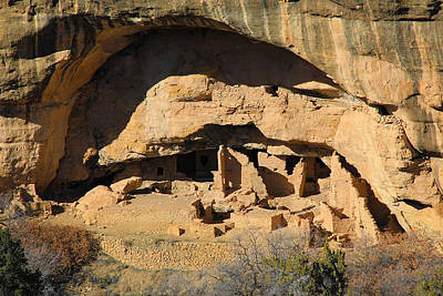 Photograph - Indian Cliff Dwellings by Steve McKinzie