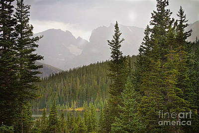Indian Peaks Colorado Rocky Mountain Rainy View Art Print by James BO  Insogna