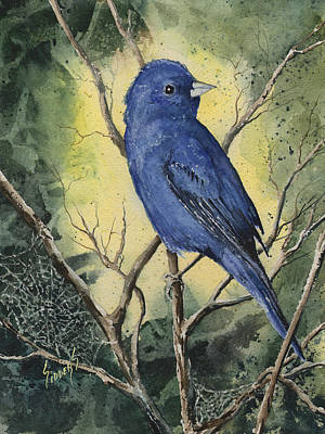 Painting - Indigo Bunting by Sam Sidders