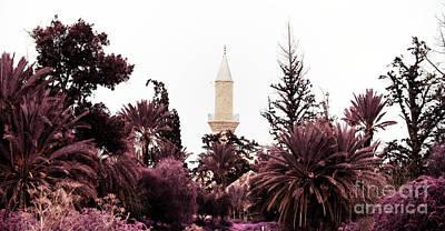 infrared Hala Sultan Tekke Art Print