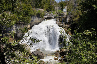 Photograph - Inglis Falls 2 by George Hawkins