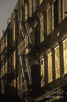 Inner City Fire Escapes Art Print by Will & Deni McIntyre