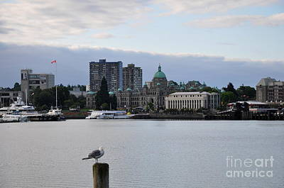 Inner Harbor Victoria Canada  2 Art Print by Tanya  Searcy
