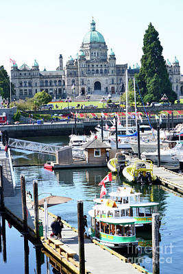 Photograph - Inner Harbour4 by Traci Cottingham