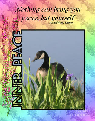 Canadian Geese Mixed Media - Inner Peace by Smilin Eyes  Treasures