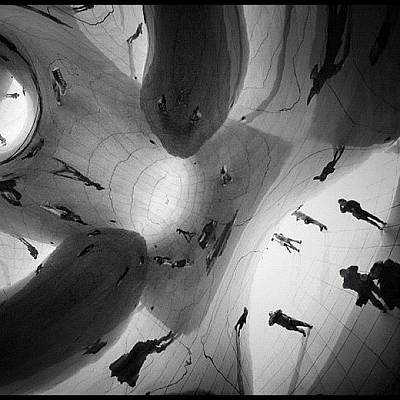 Abstract Wall Art - Photograph - Inside The Bean by Robbert Ter Weijden