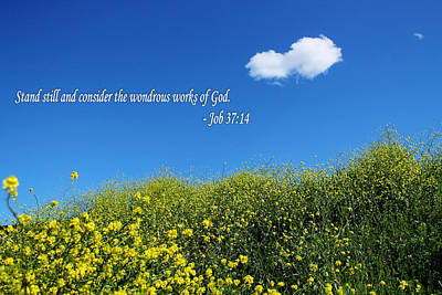 Photograph - Inspirational Quote About God  by Sarah Broadmeadow-Thomas