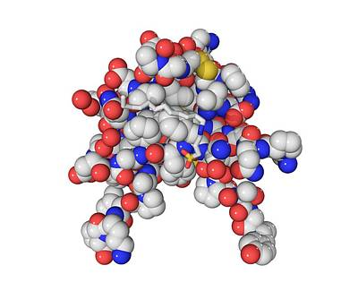 Insulin-like Growth 1 Factor Molecule Art Print by Laguna Design