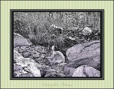Intangible Bunny Art Print by Susan Kinney