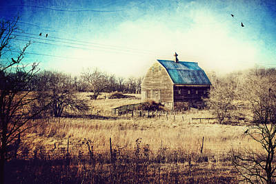 Country And Western Photograph - Interlude In Blue by Laura George