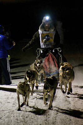 Photograph - International Pedigree Stage Stop Sled Dog Race Jackson Hole Wy by Benjamin Dahl