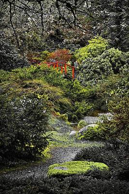 Art Print featuring the photograph Intimate Garden by Ken Stanback