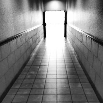 Pathway Photograph - Into The Light by Trever Miller
