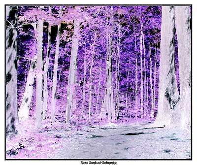 Negative Effect Digital Art - Into The Woods Inverted Negative Effect by Rose Santuci-Sofranko