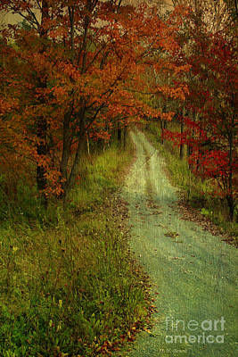 Country Dirt Roads Mixed Media - Into The Woods Of Fall by Deborah Benoit