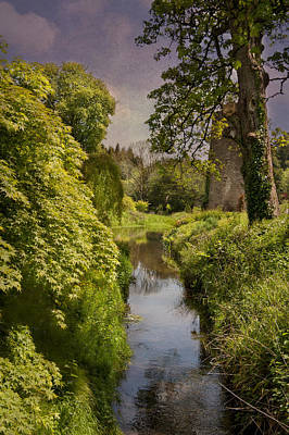 Photograph - Ireland Garden Stream by Cheryl Davis