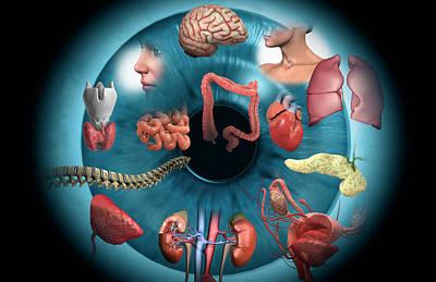 Human Brain Digital Art - Iridology by MedicalRF.com