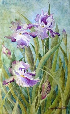 Iris Art Print by Daydre Hamilton