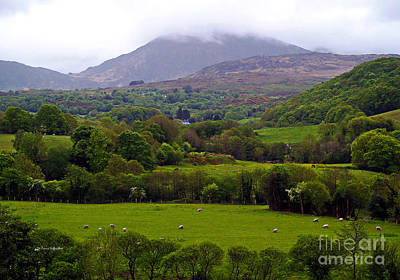 Irish Countryside II Art Print
