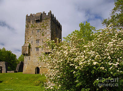 Photograph - Irish Travel Landscape Aughnanure Castle Ireland by Nature Scapes Fine Art