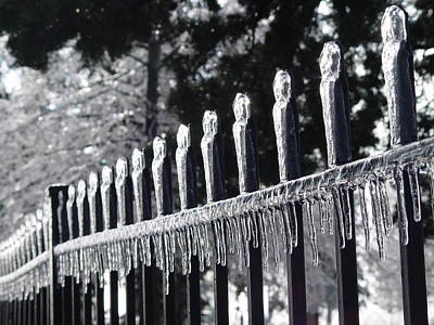 Art Print featuring the photograph Iron And Ice 1 by Elizabeth Sullivan