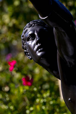 Photograph - Iron Face Of The Garden by Nicholas Evans
