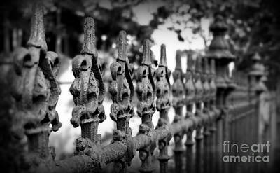 Iron Fence 2 Art Print by Perry Webster